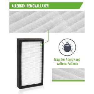 Fil-fresh 2-Pack FLT4100 Filter Value Combo, True HEPA Filter E Compatible with Germ Guardian AC4100 Air Purifier